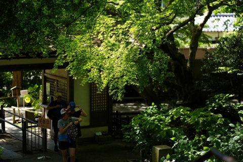 04鎌倉散歩明月院