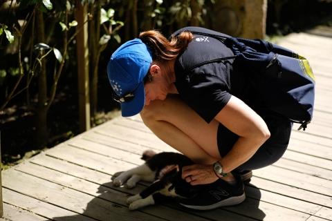 06鎌倉散歩:明月院・ネコと外国人女性