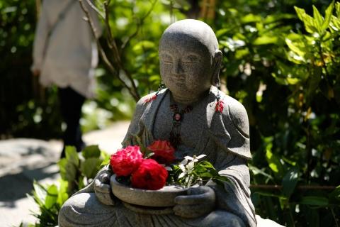 10鎌倉散歩:明月院・花を抱く石仏