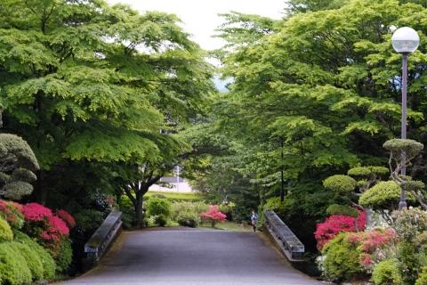 23花月園