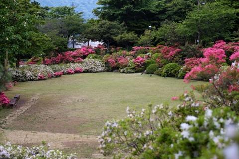 26花月園