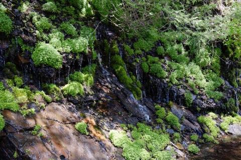 08スズラン峠へ湧き水