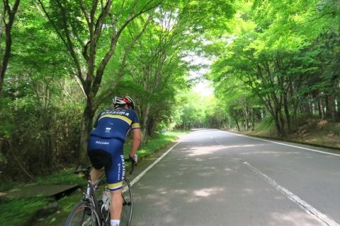 09富士山こどもの国裏手の最高の道疲れた走り