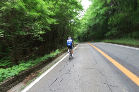 11登山道下り篠坂へ