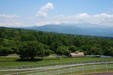 05八ケ岳高原ライン八ヶ岳牧場