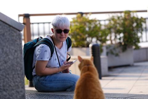 10江の島のネコ