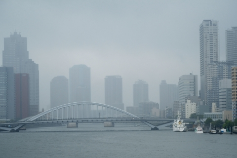 14竹芝桟雨に煙る築地大橋