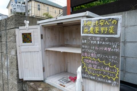 03興覚めの野菜売り場