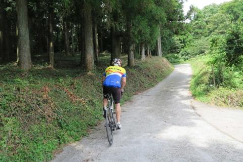 13東海道自然遊歩道