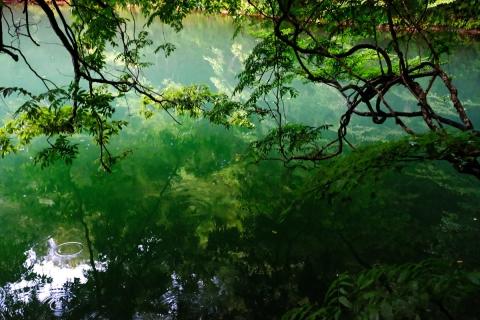 02早朝の十二湖