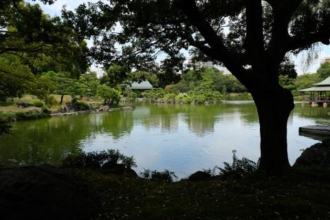 13清澄庭園