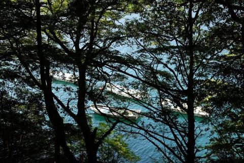 13芦ノ湖湖畔の道