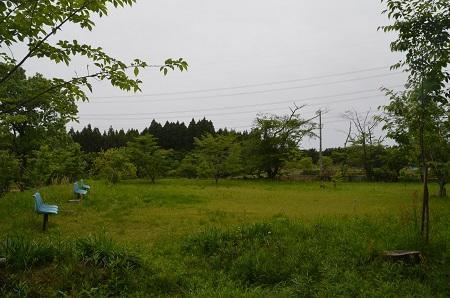 20170509奈良の大仏07