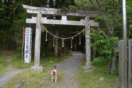 20170509熊野の清水04