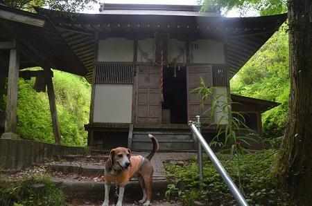 20170509熊野の清水11