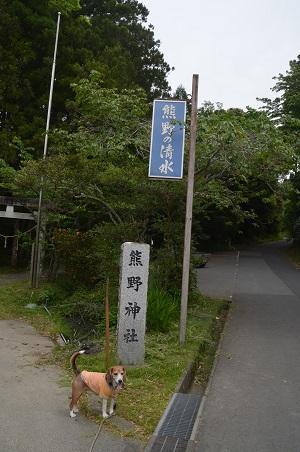 20170509熊野の清水01