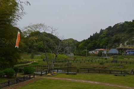 20170509熊野の清水公園34