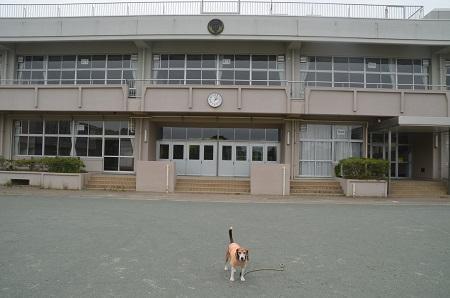 0170509東小学校09