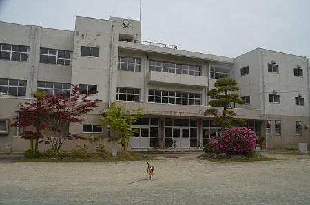 20170509長南小学校12