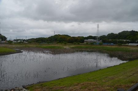 20170514ひょうたん島池22
