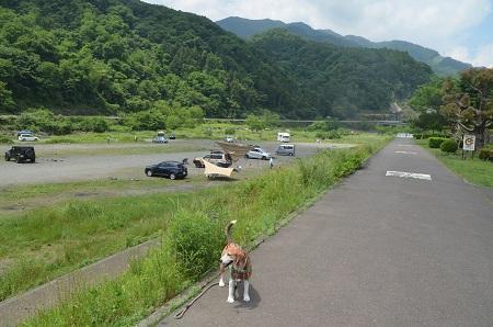 20170527経ヶ岳12