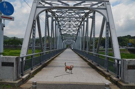 20170527平山橋06