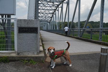 20170527平山橋05