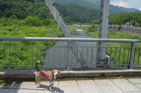 20170527平山橋11