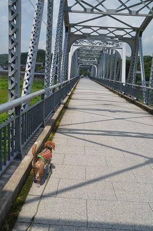 20170527平山橋08