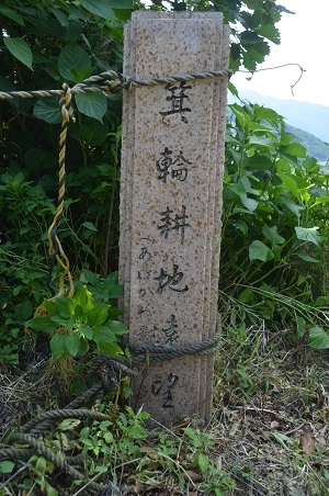 20170527箕輪耕地02