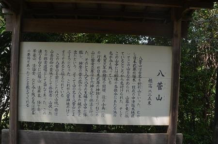 20170527八菅神社05