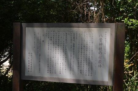 20170527八菅神社04