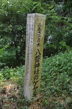 20170527八菅神社09