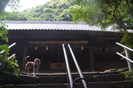 20170527八菅神社18