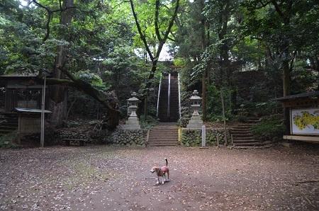 20170527八菅神社16