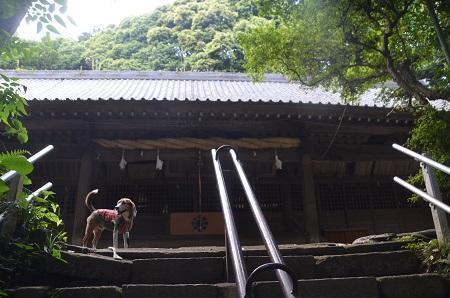 20170527神奈川の八菅神社12