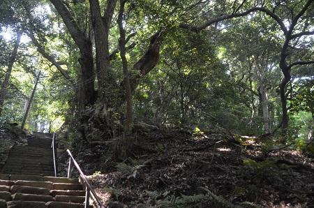 20170527神奈川の八菅神社11