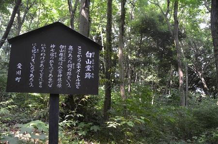 20170527八管山憩の森06