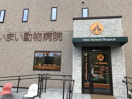 20170527 びいすけ病院01