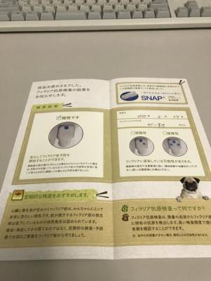 20170527 びいすけ病院10