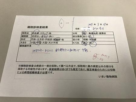20170527 びいすけ病院09