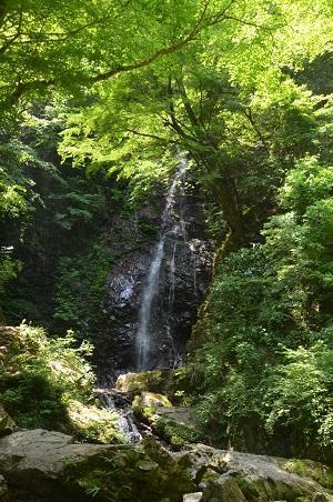 20170531 払沢の滝05