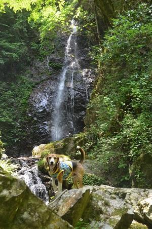20170531 払沢の滝10