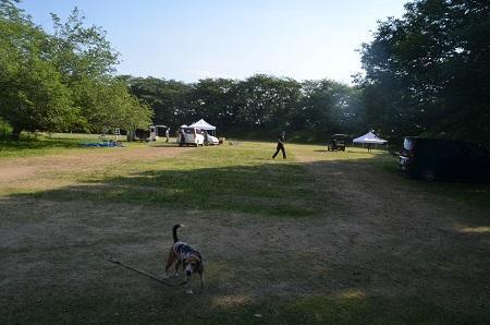 20170605佐倉城址公園25