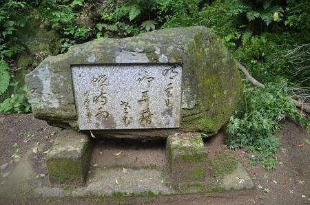 20170615龍福寺と不動滝20