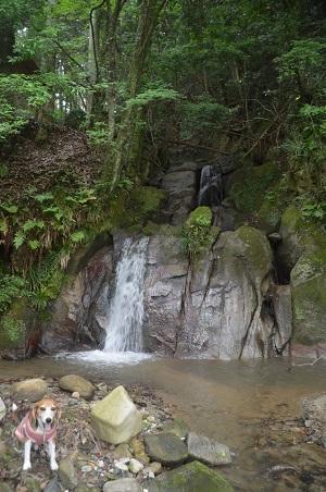 20170626白井不動の滝12