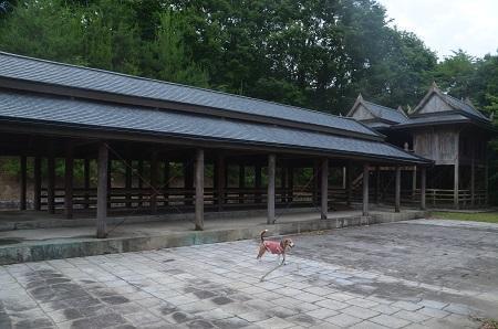 20170626花の入公園03