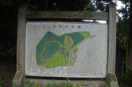 20170626花の入公園02