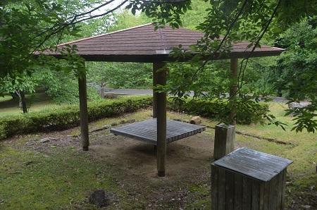 20170626花の入公園13