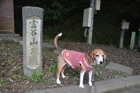 20170226富谷山ふれあい公園02